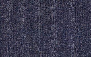 T10117