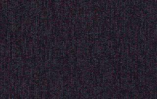 T10123